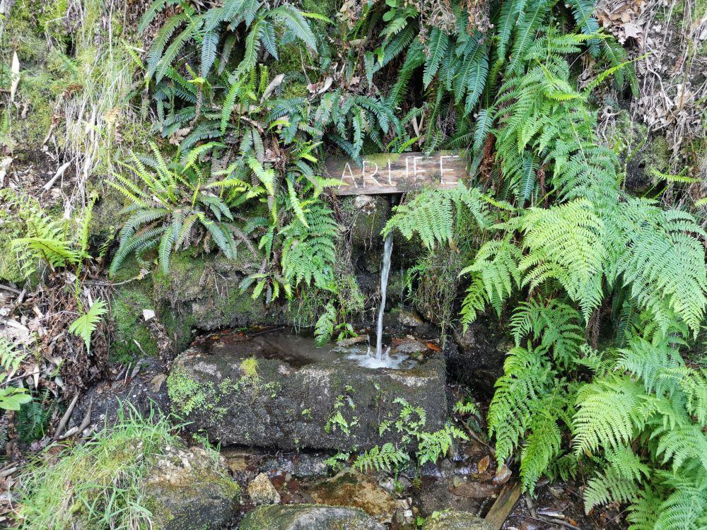 Fonte de Arufe na entrada do pobo.