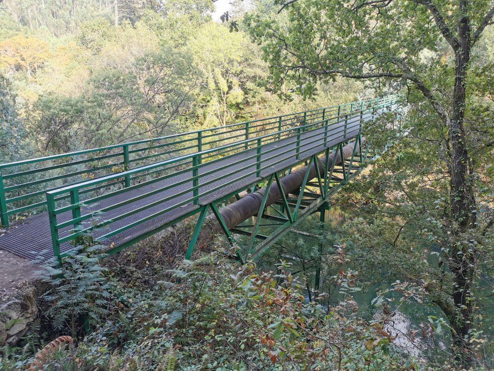 Unha das pontes peatonais do Lerez