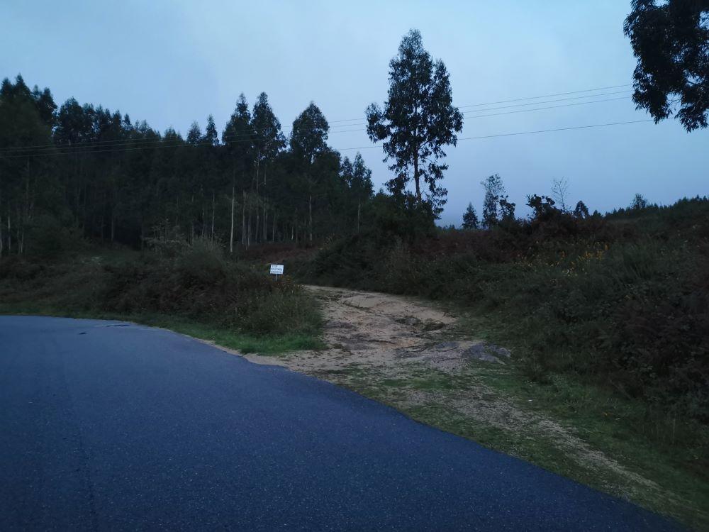 Camiño de comezo da ruta, xusto enfrente da canle de Mirón