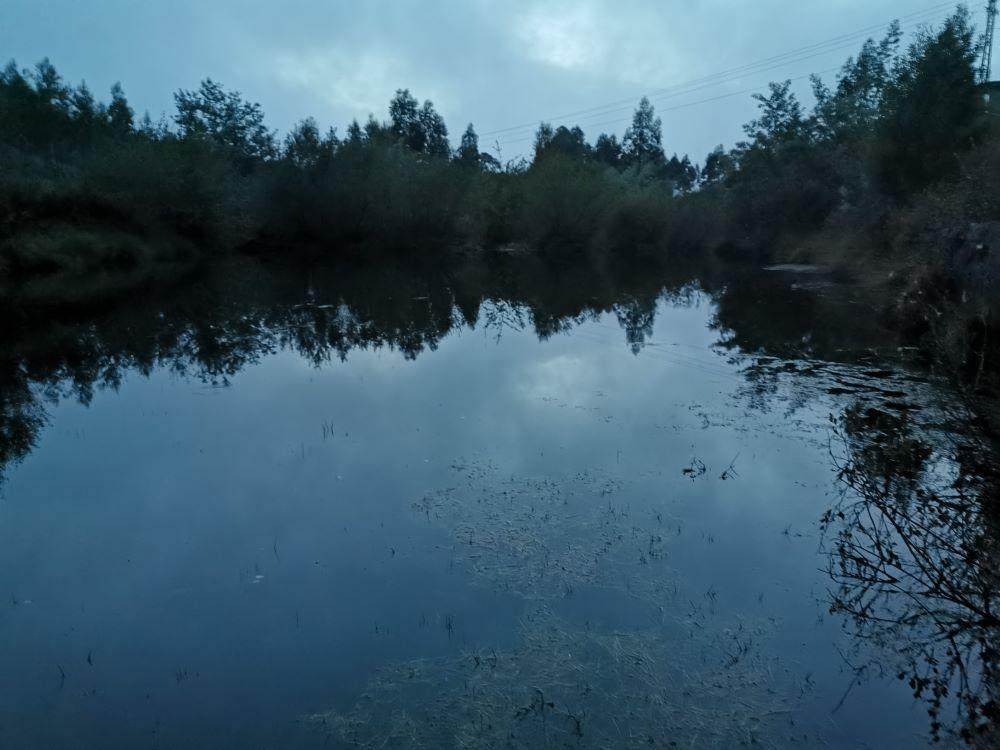 Unha presa cerca da ruta dos mouros, un gran habitat de anfibios.